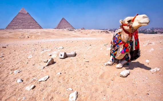 Egyptian pyramids - Global Travel Alliance SA