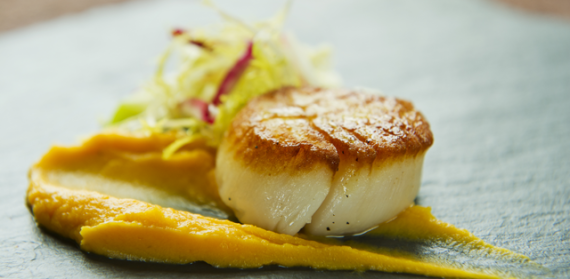 Sea Scallop with Kumara-Red Curry Puree - Global Travel Alliance SA