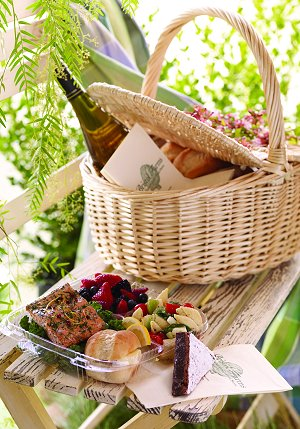 picnic - Global Travel Alliance SA