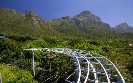 Kirstenbosch Gardens - Boomslang - global travel alliance sa