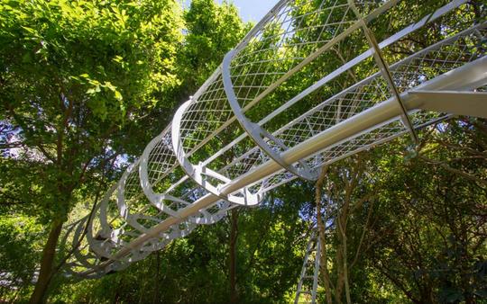 Kirstenbosch Gardens - Boomslang - global travel alliance sa5