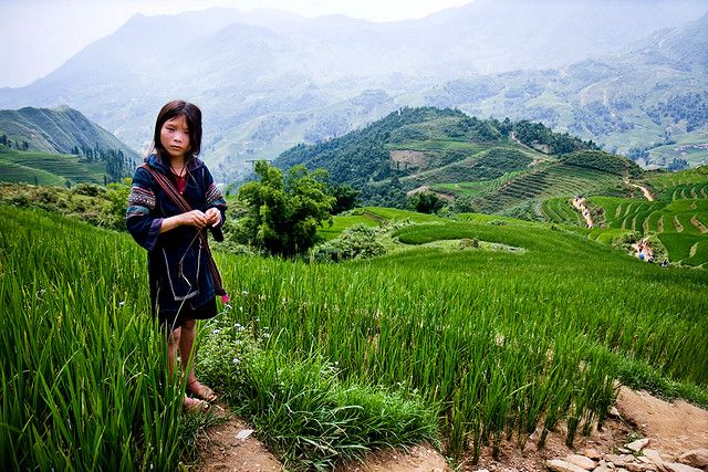 Vietnam - Global Travel Alliance SA
