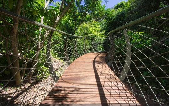 Kirstenbosch Gardens - Boomslang - global travel alliance sa6